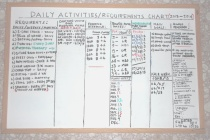 Charting, Scheduling, and Records Keeping